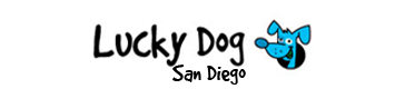 Lucky Dog Pet Sitting and Dog Walking Services